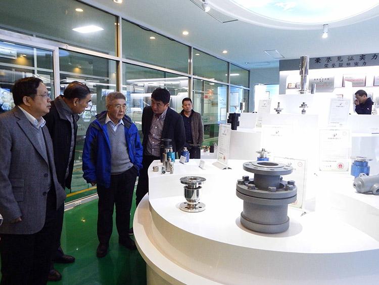 中国工程院院士来公司指导工作
